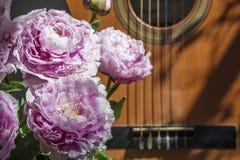 Buketten av rosa pioner är nära den bruna gitarren Royaltyfria Bilder