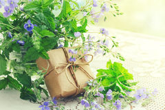Buketten av små delikata blått blommar veronica, gåvaask arkivbilder