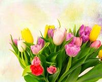Buketten av tulpan blommar på en retro teckningsbakgrundstappning Royaltyfria Foton