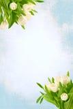 Buketten av tulpan blommar på en retro teckningsbakgrundstappning Arkivbild