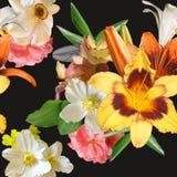 Buketten av våren blommar på en sömlös svart bakgrund vektor illustrationer