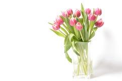buketten blommar fjädern Royaltyfria Bilder