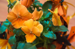 buketten blommar orangen Fotografering för Bildbyråer