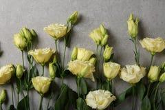 Buketten blommar på grå bakgrund royaltyfria bilder