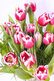 buketten blommar pink Royaltyfri Fotografi
