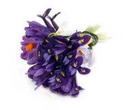buketten blommar purple arkivfoto