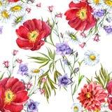 Buketten blommar, vit bakgrund, vattenfärgen, modell Royaltyfria Bilder