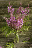 buketten blommar wild Royaltyfria Foton