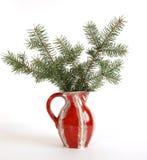 buketten branches spruce Arkivbild