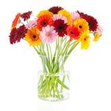 Buketten Gerber blommar i den glass vasen Arkivbilder