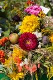 buketter av blommor och örter Arkivbilder