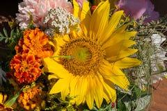 buketter av blommor och örter Royaltyfri Fotografi
