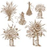 Buketter av blommor, sädesslag och torkade örter i lantlig stil Fotografering för Bildbyråer