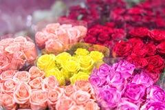 Buketter av multiclored rosor ny bakgrundsblomma Blomsterhandlareservice Blomsterhandel för grossist för bröllopgåva Blommalagrin Royaltyfri Fotografi