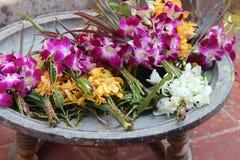 Buketter av orkidér har satts in i en bunke (Thailand) royaltyfri fotografi