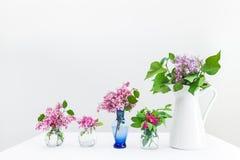 Buketter av rosa färg- och lilavårblommor Fotografering för Bildbyråer