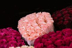buketter av rosor i olika färger Fotografering för Bildbyråer