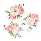 Buketter av steg, pionen, ranunculusen, dahlian, nejlikan, gröna växter Royaltyfria Foton