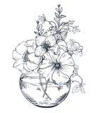 Buketter med den drog handen blommar och växter i kruset stock illustrationer