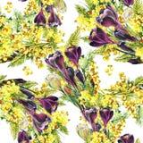 Bukettkrokus och mimosa, vattenfärg Arkivbilder