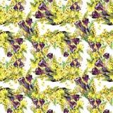 Bukettkrokus och mimosa, vattenfärg Royaltyfria Foton
