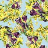 Bukettkrokus och mimosa, vattenfärg Royaltyfri Bild