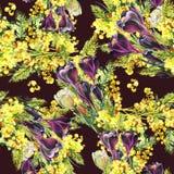 Bukettkrokus och mimosa, vattenfärg Arkivfoto