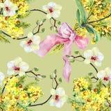 Bukettmimosa, orkidé och pilbåge, vattenfärg Fotografering för Bildbyråer