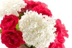 bukettvanlig hortensia steg Royaltyfri Foto
