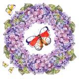 Bukettvanlig hortensiablomma, fjärilsgirlandvattenfärg Royaltyfri Bild