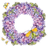Bukettvanlig hortensiablomma, girlandfjärilsvattenfärg Royaltyfria Foton
