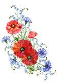 Bukettvildblommor, vattenfärg, mönstrar sömlöst Royaltyfri Fotografi