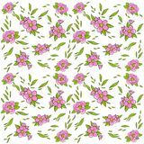 bukietów formie ciągnąć wzoru mały bezszwowy kwiat Czereśniowi okwitnięcia Wektorowy wizerunek na białym tle Element tkaniny, pro Zdjęcie Royalty Free
