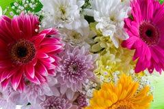 bukietów piękni kwiaty Fotografia Royalty Free