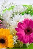 bukietów piękni kwiaty Obraz Stock