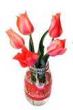 bukietów tulipany Zdjęcia Stock