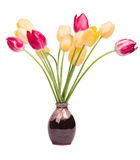bukietów tulipany Zdjęcia Royalty Free