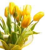 bukietów tulipany Obrazy Royalty Free