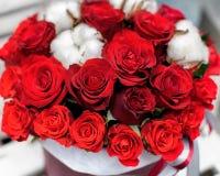 bukiet świętowania dnia kwiaty trochę czerwone róże Obraz Stock