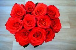 bukiet świeże i jaskrawe czerwone róże Obrazy Royalty Free