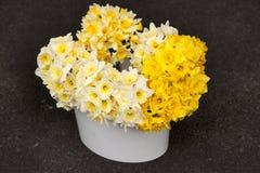 Bukiet żółci daffodils Zdjęcia Royalty Free