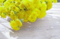 Bukiet żółci dandelions Zdjęcia Royalty Free