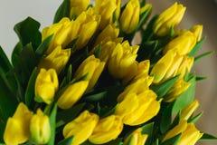 Bukiet żółci tulipany w wnętrzu Zdjęcia Stock