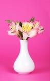 Bukiet alstroemeria w wazie zdjęcia royalty free
