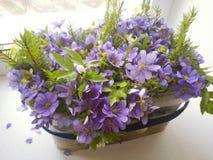 Bukiet błękitni i biali anemonowi kwiaty zdjęcia stock