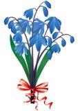 bukiet błękitny śnieżyczki Fotografia Royalty Free