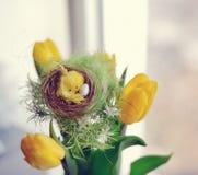 bukiet barwi wiosna Zdjęcie Stock