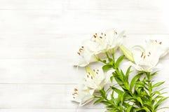 Bukiet białe leluje na białego drewnianego tła odgórnym widoku Kwitnie leluja pięknego bukieta białych kwiaty fotografia royalty free