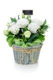 Bukiet białe róże Zdjęcie Royalty Free