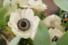 bukiet biali anemony na tle stół kwitnie przy którym pracuje wśród inny kwiaciarnia kosmos kopii obrazy stock